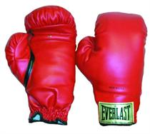 Everlast Everhide Boxing Gloves